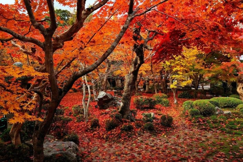 Wallpaper autumn wallpapers temple enkoji colorful world 1920x1080 .