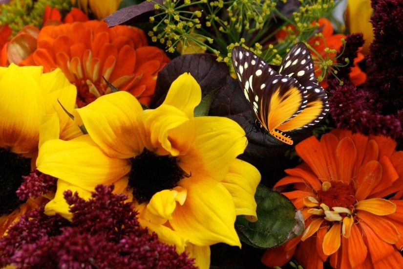 Dahlia Tag - Papillon Fall Grown Fleurs Yelow Orange Leafy Bouquet Bright  Butterfly Green Dahlia Herbage