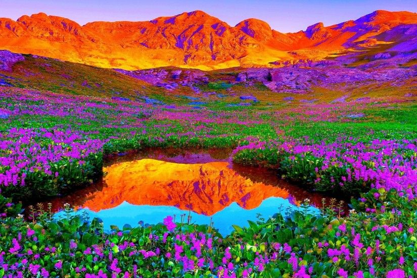 Brilliant Colors Of Nature Hd Desktop Background wallpapers HD .