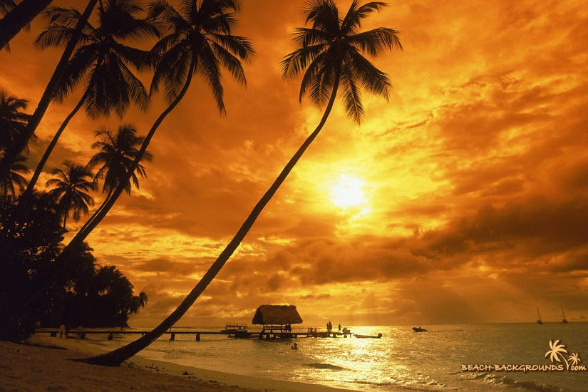 Tropical Island Sunset Wallpapers Background