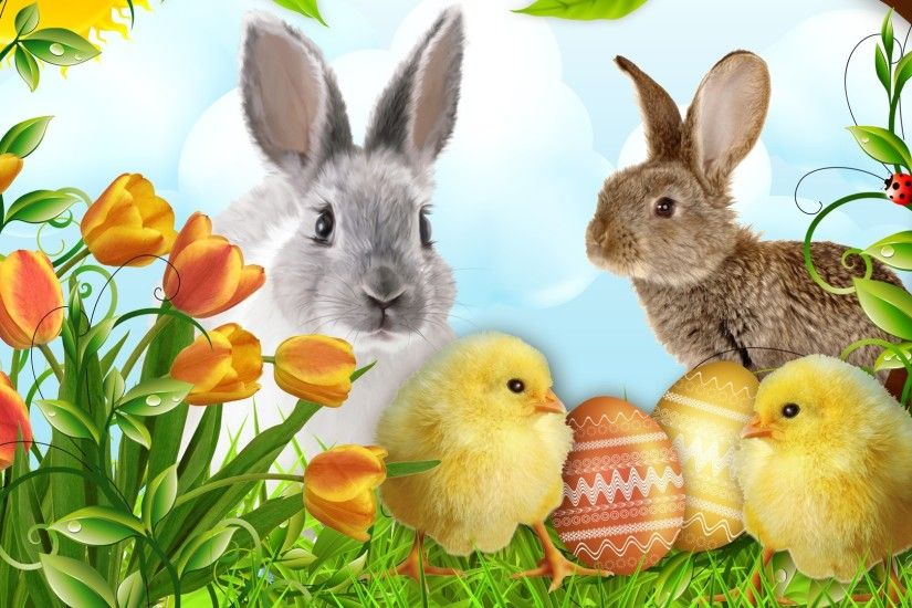 Happy Easter desktop hd wallpapers, hd images. Happy Easter cute bunny.