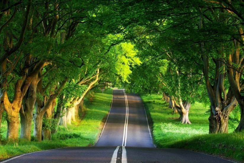 Road summer Beautiful natural scenery Desktop Wallpapers - 1531621