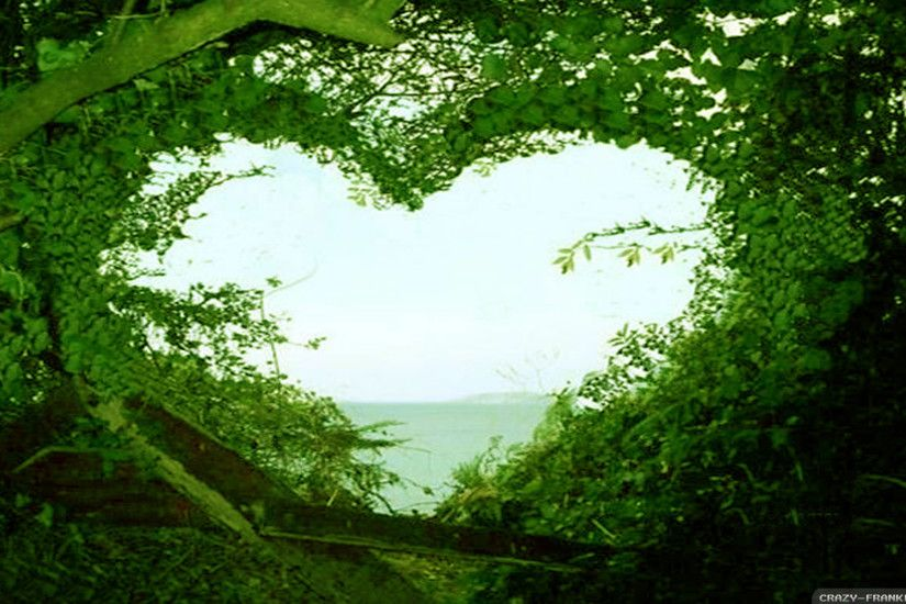 ... Natures Love Wallpaper In Hd 15 Videos Home Wallpapers Love Wallpapers  ...