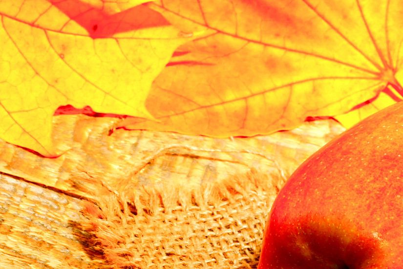 Autumn background apple and leaf