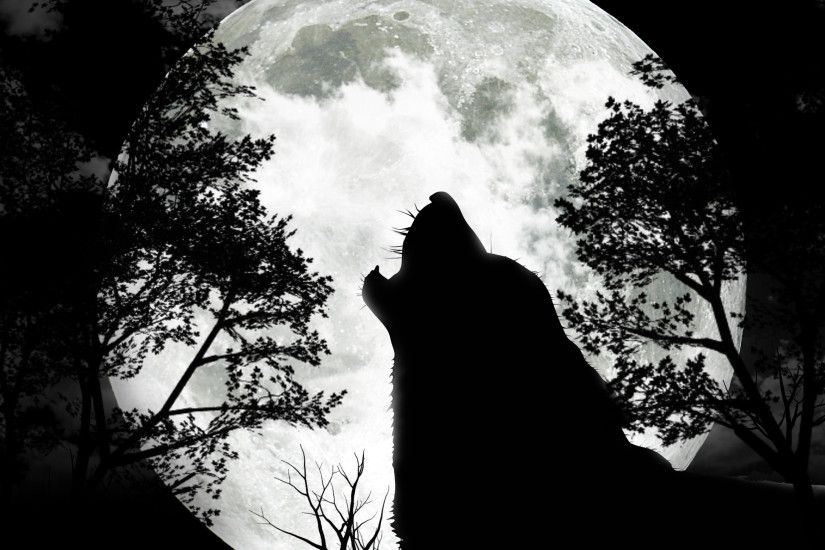 The Full Wolf Moon – 9th January '12