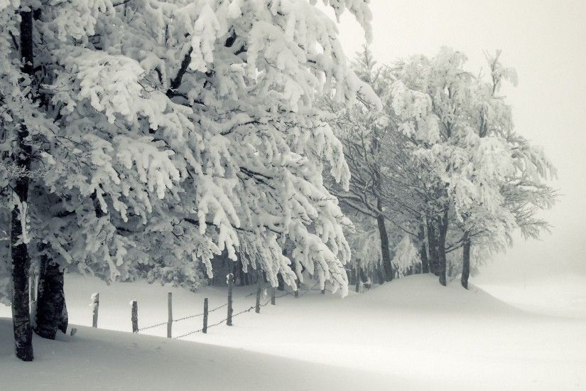 Fence <b>Snow Winter</b> Nature wallpaper | <b>
