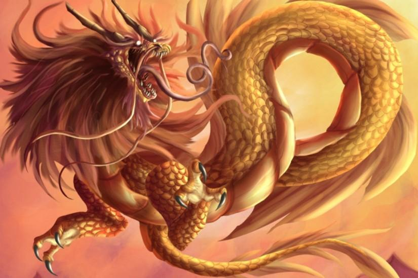 free dragon backgrounds 2560x1600 full hd