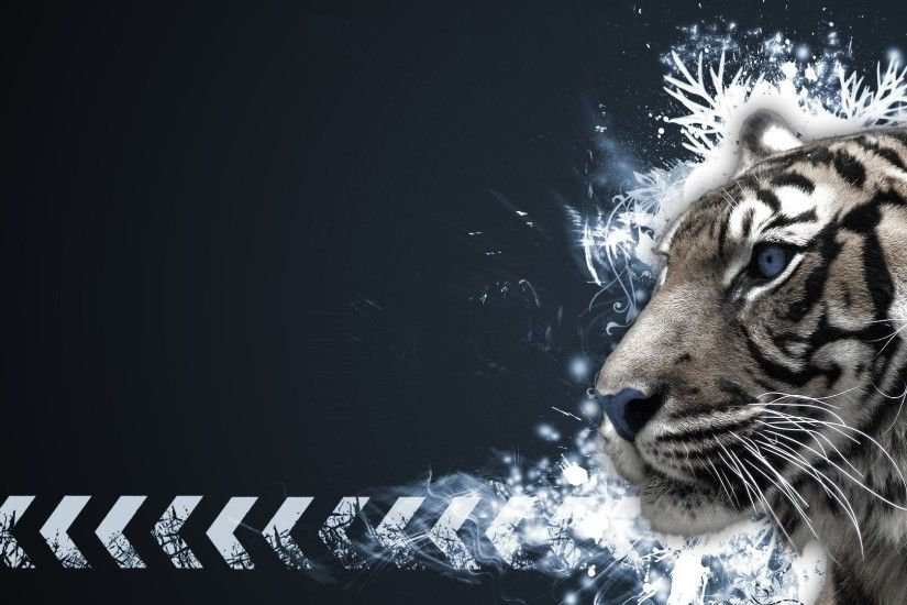 Tigers Tag - Tigers Vector Art Manip Cat Photo Download Free for HD 16:9