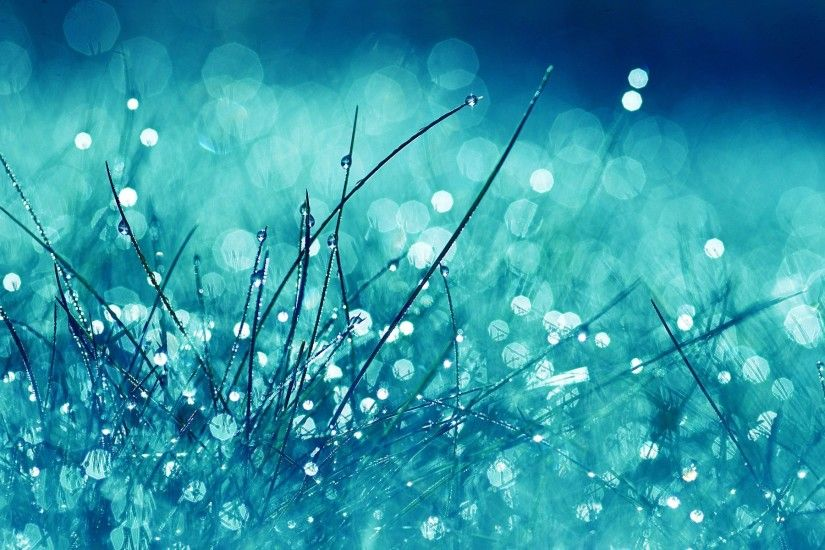 1920x1200 Wallpaper grass, glare, glitter, light, bright