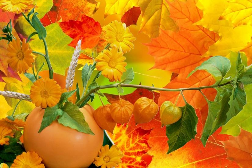 HD Abundance Of Fall Colors Wallpaper | Download Free - 60021