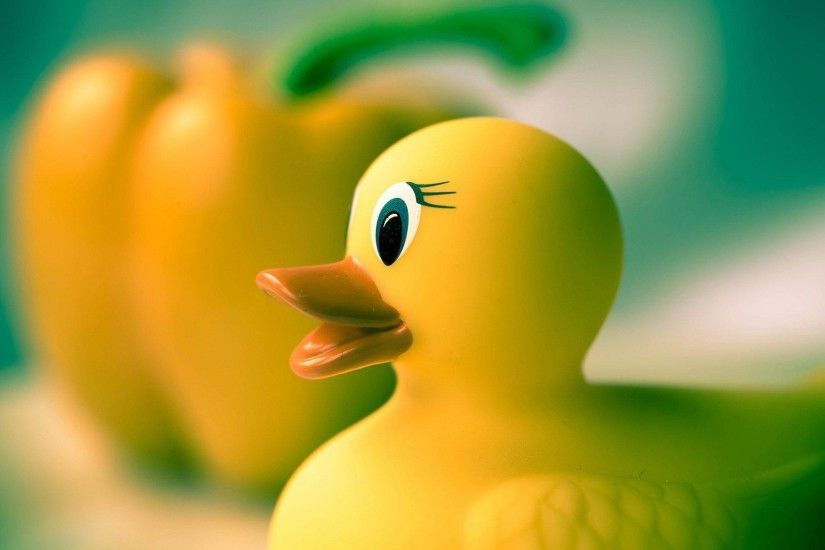 Wallpapers For > Colorful Rubber Duck Wallpaper