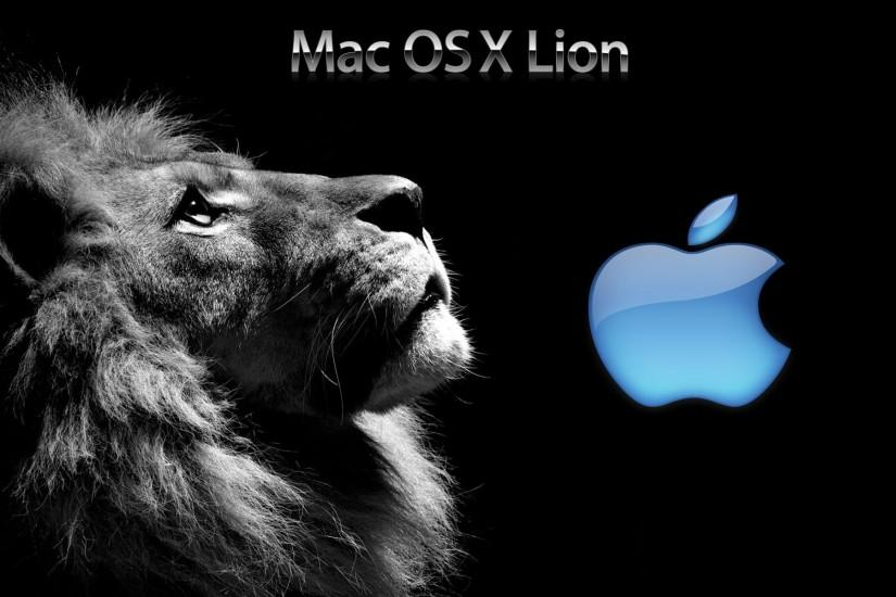 best lion background 1920x1200 for iphone 5