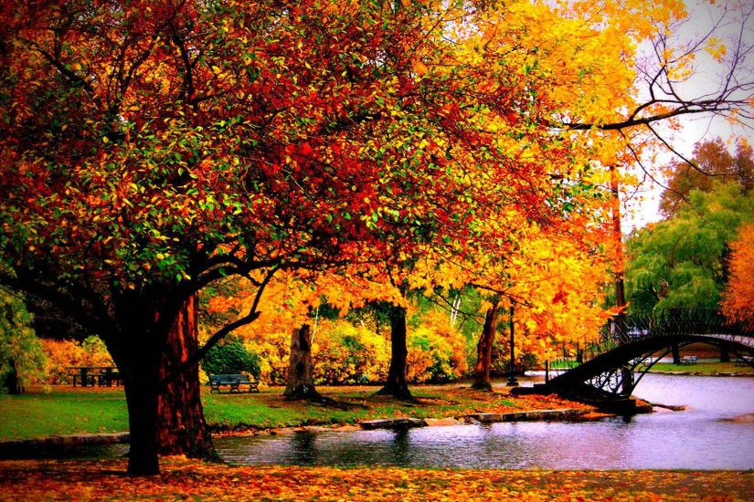 Fall Wallpaper Background 8 Autumn Examples For Your Desktop