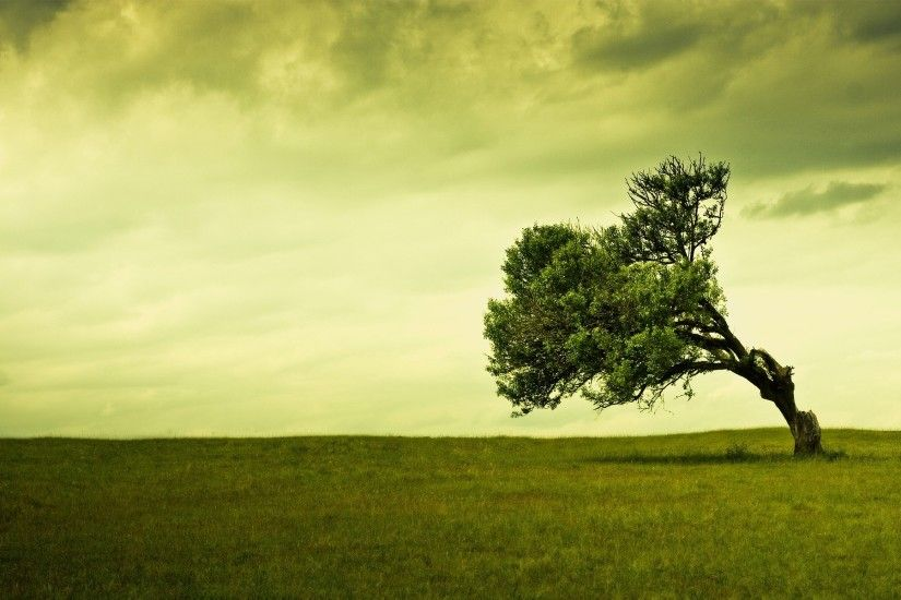 Stand Alone Wallpaper Photo Manipulated Nature Wallpapers