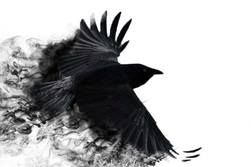 Preview wallpaper crow, wings, bird swing 2048x2048