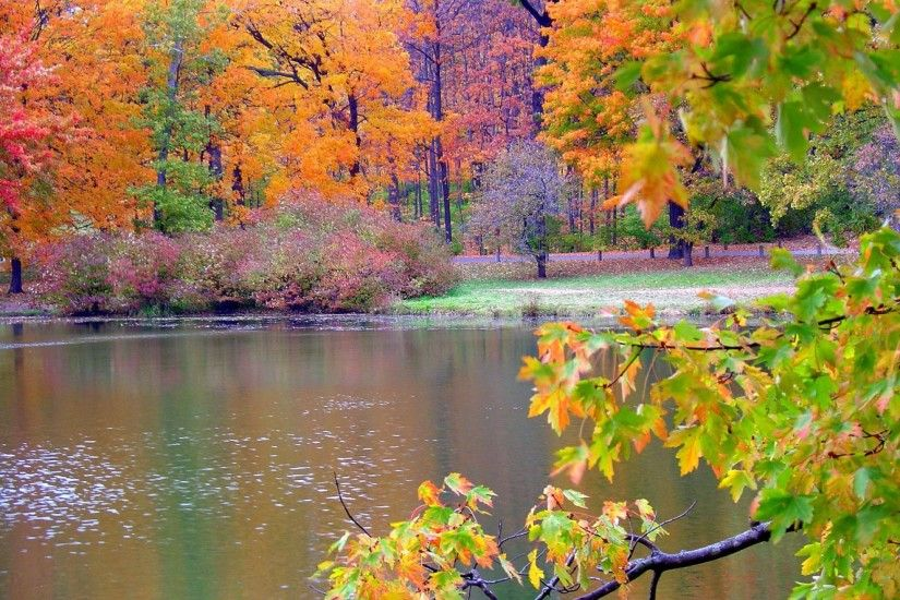 Wallpaper of Autumn Nature - http://whatstrendingonline.com .