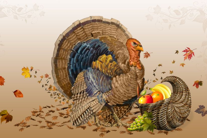 Happy thanksgiving 2012 turkey Wallpaper HD