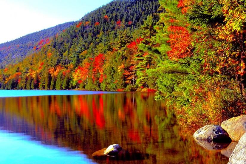 LAKE AUTUMN Forest Foliage Conifer Fall Color Acadia National Park Crater  Desktop Backgrounds Detail