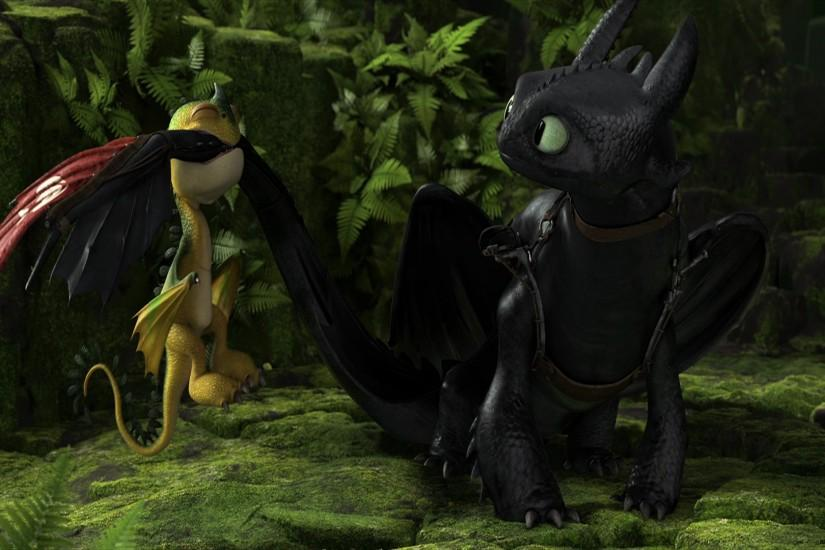 Movie - How To Train Your Dragon 2 Toothless (How To Train Your Dragon)