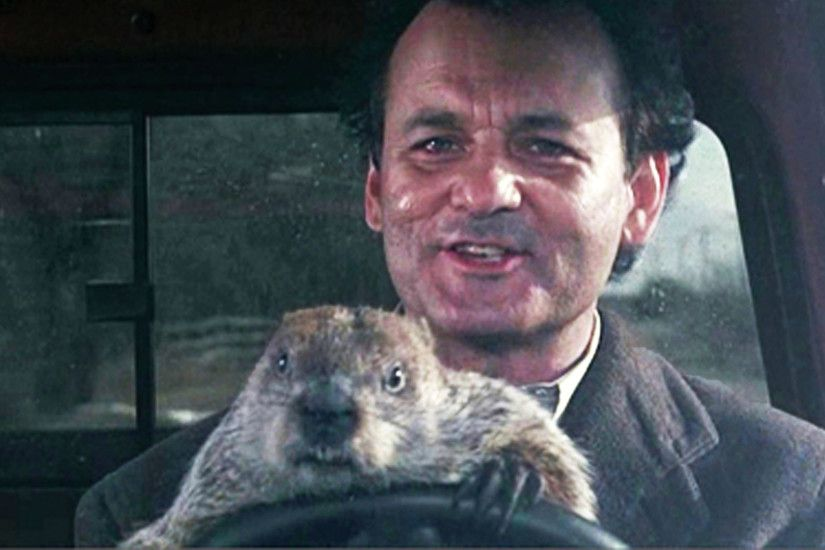 Bill Murray Day: A Groundhog Day Celebration
