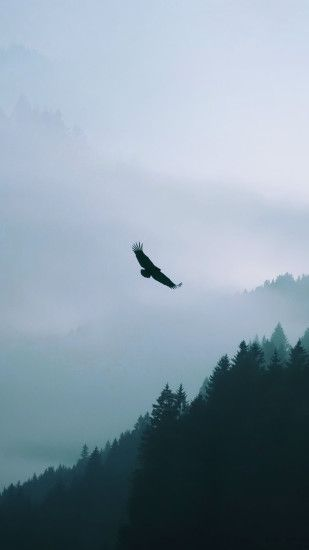 Eagle Flying Over Misty Forest Android Wallpaper free download