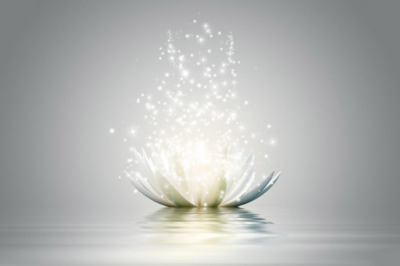 lotus flower wallpaper - View All