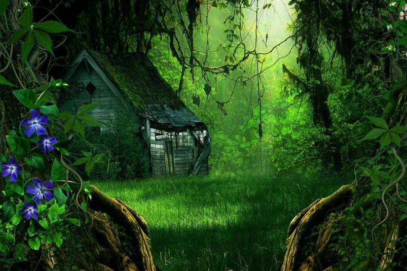 Fantasy Forest Wallpaper 1920x1080 -in-the-forest-1920x1080-