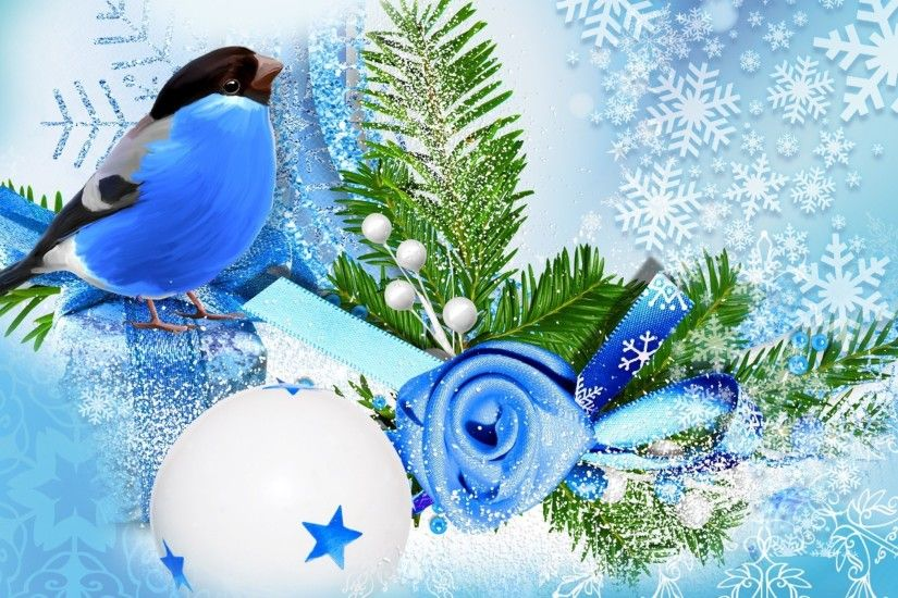 Blue bird winter season wallpaper