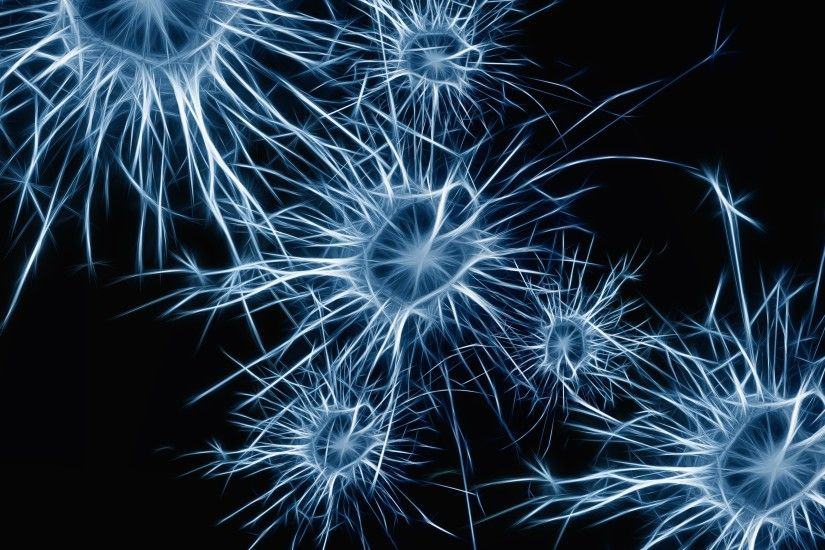 3840x2160 Wallpaper neurons, cell, structure