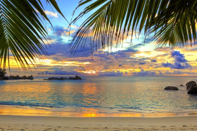 Preview wallpaper beach, tropics, sea, sand, palm trees 1920x1080