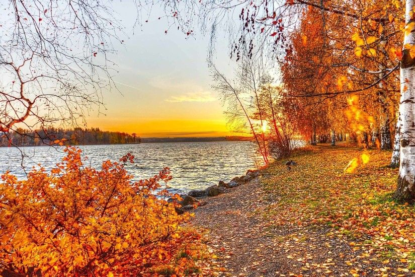 Autumn Landscape wallpaper - 819446