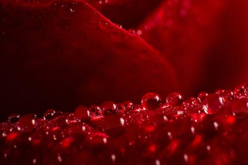 cute red water drops HD backgrounds - desktop wallpapers