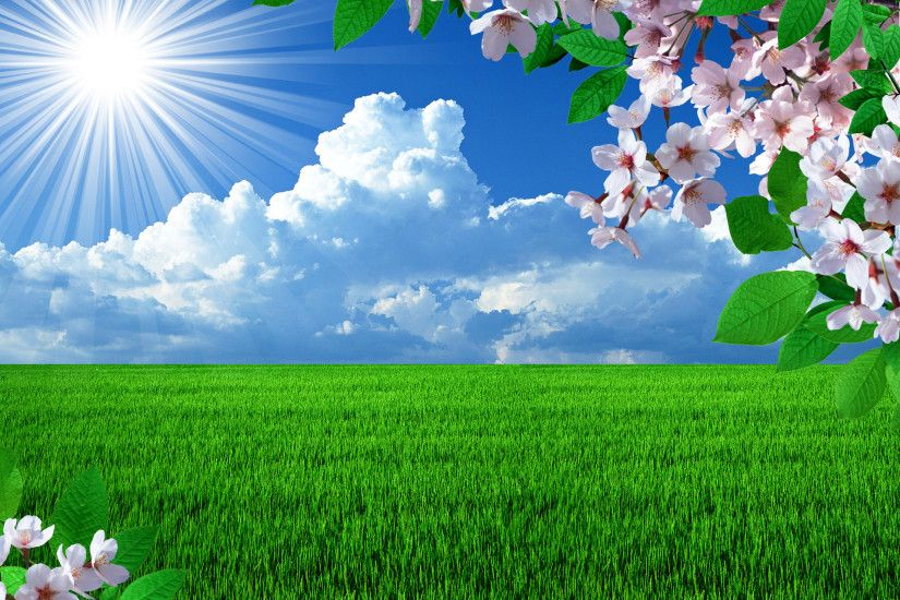 Free Spring Desktop Wallpapers Backgrounds - WallpaperSafari