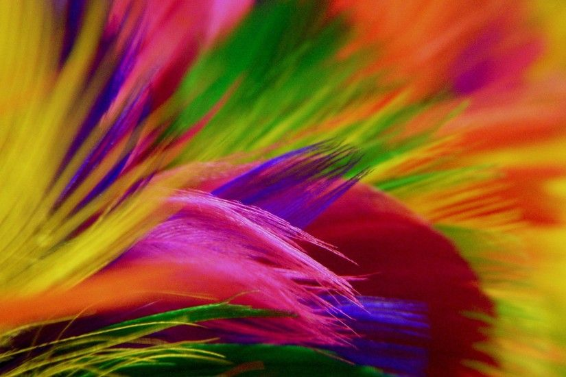 Colorful Abstract Flowers Hd 890399 Wallpaper wallpaper