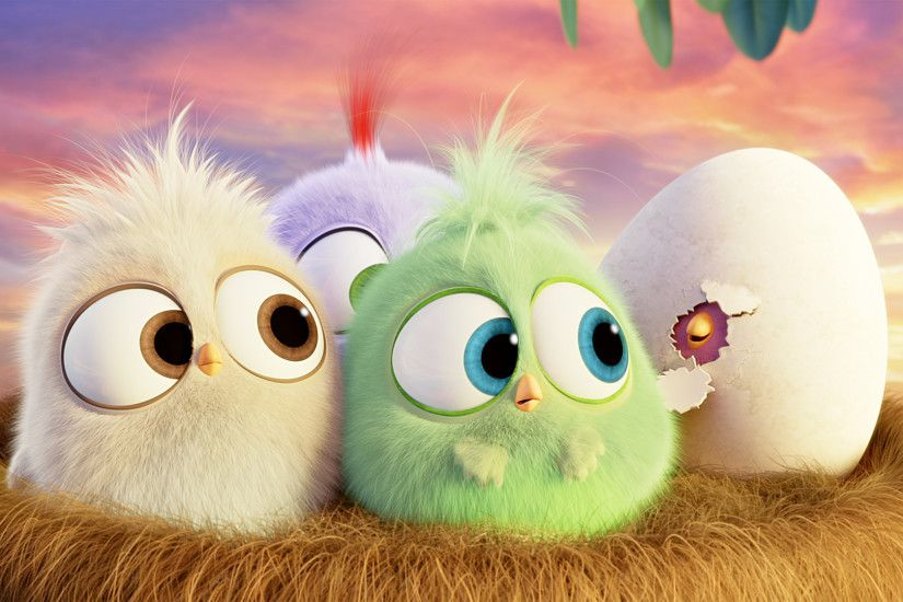 Hatchlings Angry Birds Hd Wallpaper 1920x1080 Need IPhone 6S Plus