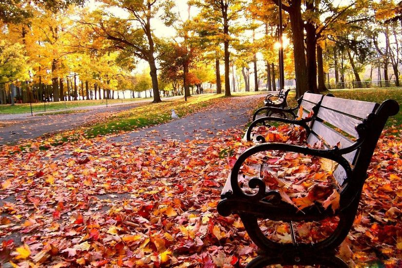 Fall Desktop Backgrounds HD.