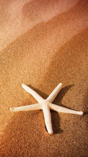 Pure Simple Seaside Beach Starfish Macro #iPhone #6 #plus #wallpaper