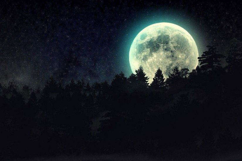 Full moon beyond the pines wallpaper thumb