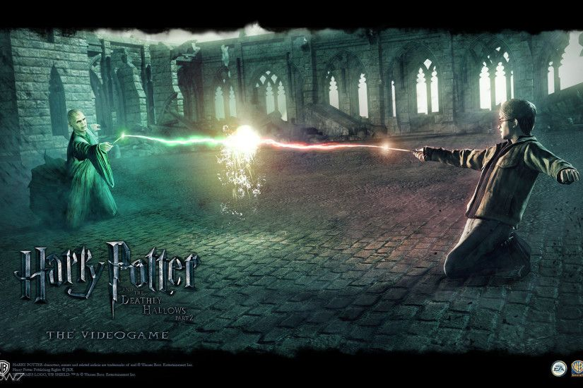harry potter and the deathly hallows harry vs voldemort final duel  widescreen wallpaper