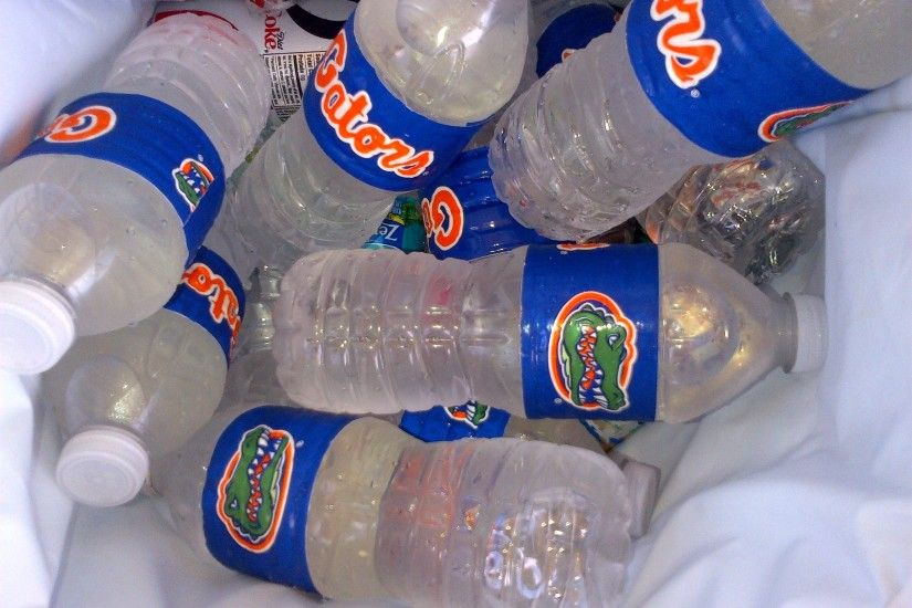 Florida Gator Water Bottles (made with duct tape) | University of Florida  TailGATOR |