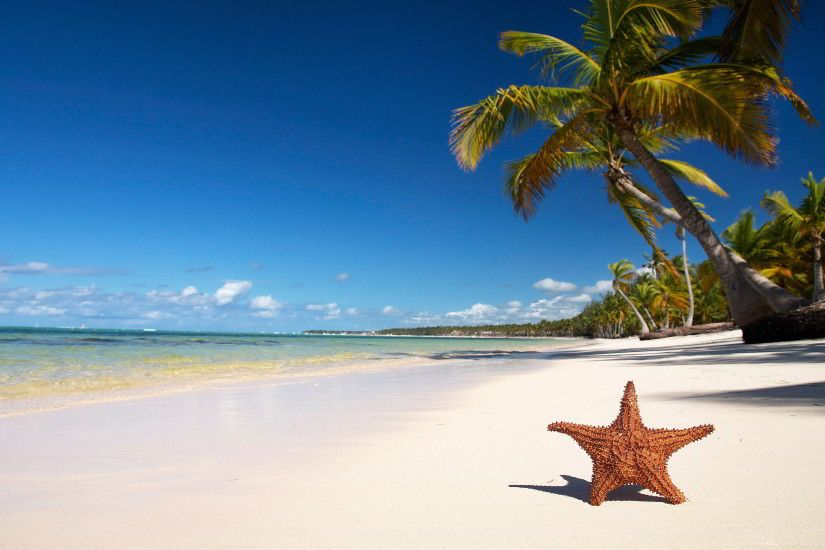 star fish Beach Wallpapers. Â«Â«