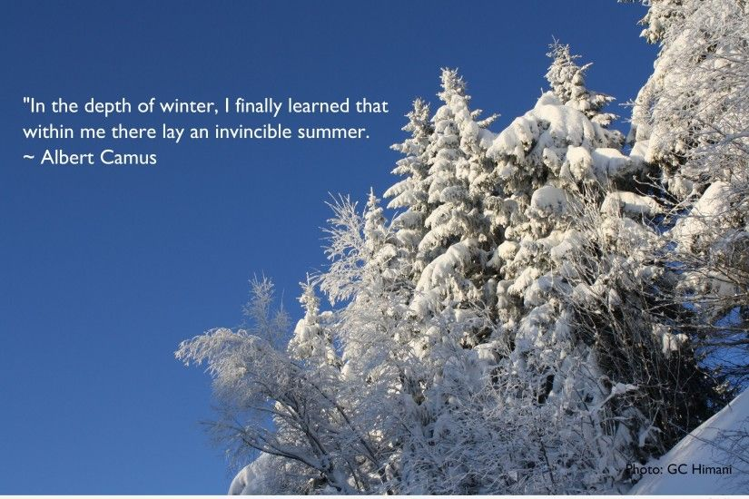 ... Winter Snow Funny Desktop backgrounds with quotes and sayings ...