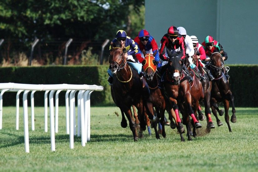 Horse Racing Wallpapers, Pictures, Images