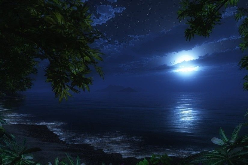 Download Free Wallpapers Backgrounds - Wallpaper night moon beach sea .