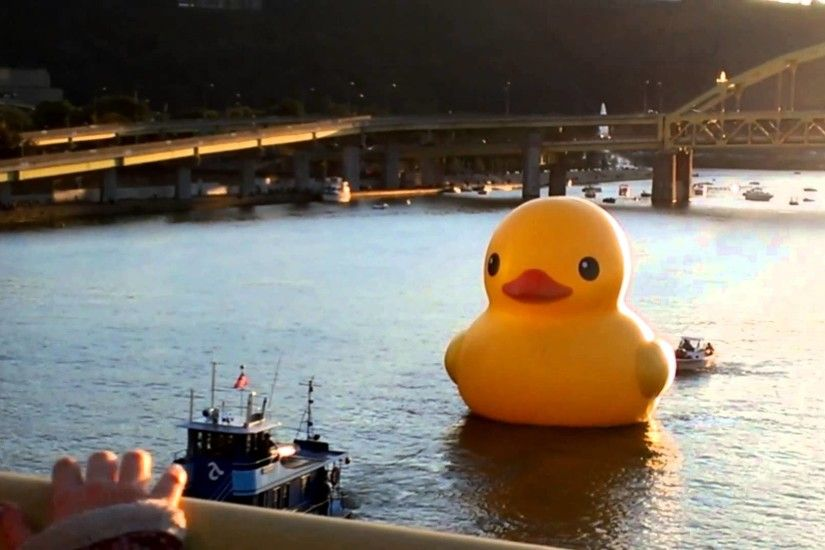 Giant Pirate Duck in Pittsburgh | Coolest Thing I've Ever Seen .