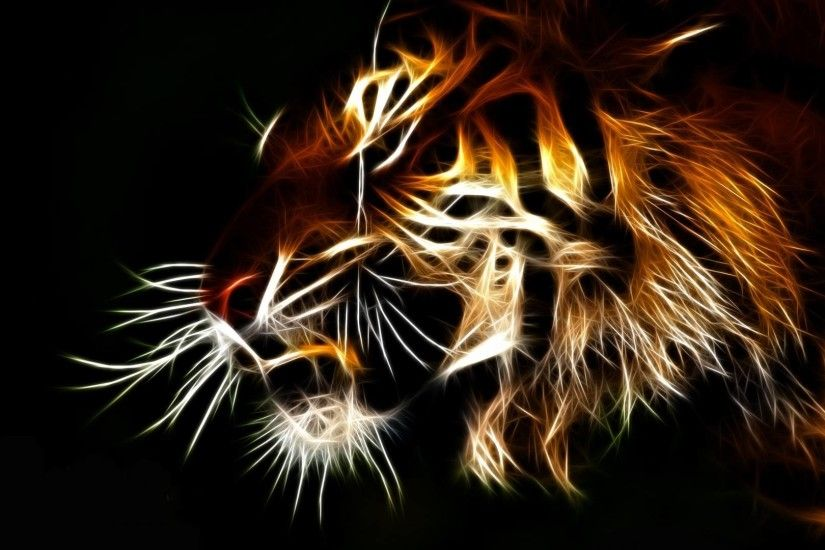 tiger hd wallpaper 0017