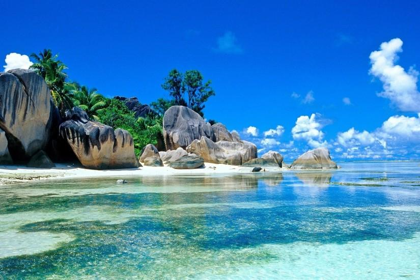 Preview wallpaper sea, palm trees, coast, stones, boulders, tropics  1920x1080