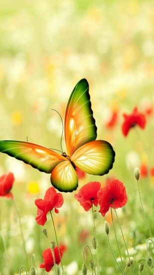 0 Flower iPhonePlus Wallpapers HD Free Download Butterfly iPhone Wallpaper  Pixels Talk