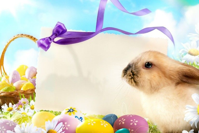 Easter Greetings Flowers Card Eggs Cute Bunny Meadow Spring Greeting Rabbit  Flower Wallpaper Backgrounds - 3656x2912