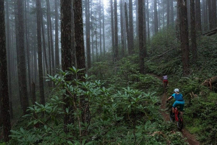 Marketing, Momentum, and Mountain Biking | Clymb Marketing ...